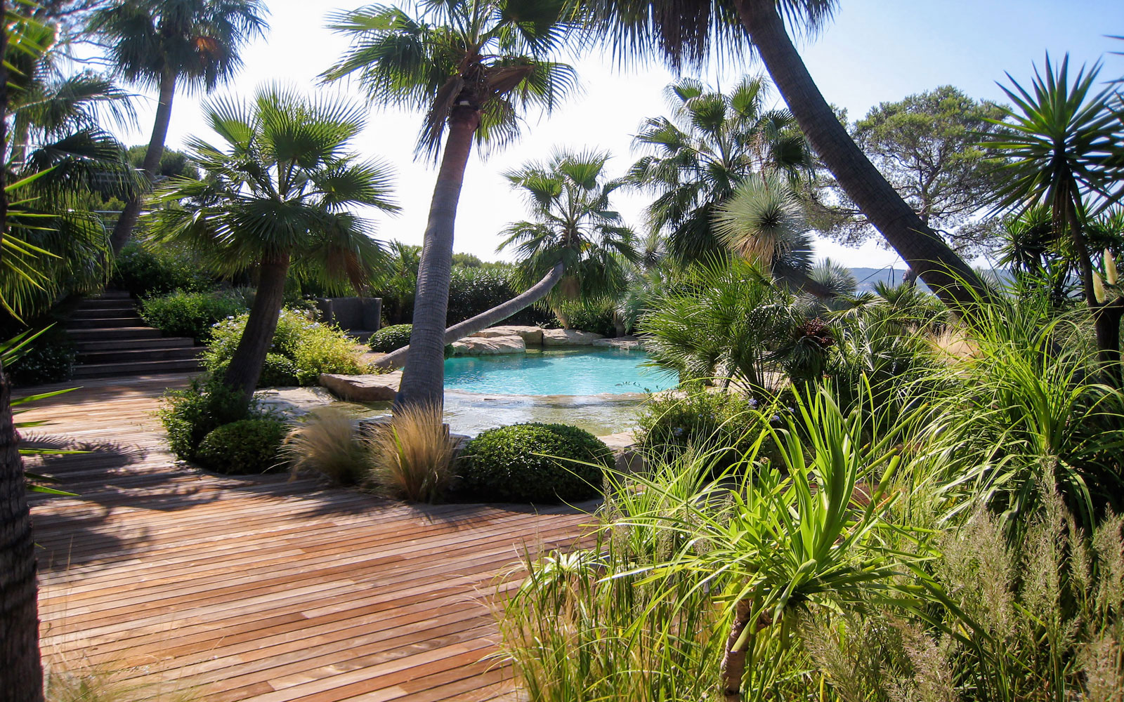 Naturalistic pool and palm trees