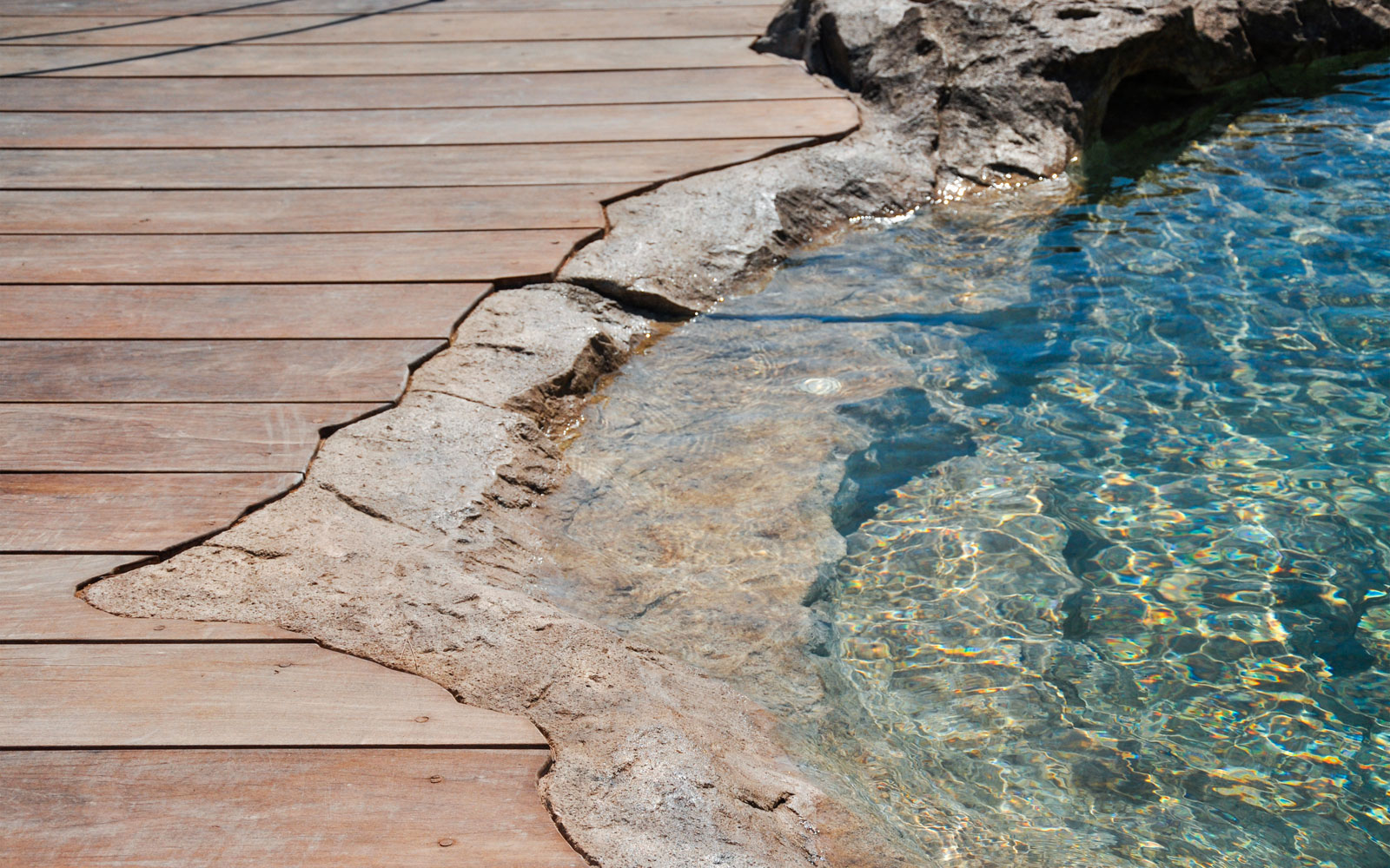 Bassin de baignade ou bassin poissons paysag for Piscine miroir debit